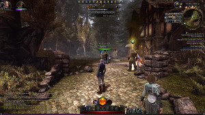 neverwinter forest